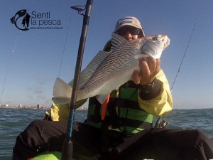 160203 KAYAKFISHING CERCA DE LA COSTA17