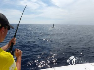 AQUAFISH FISHING TOUR  (2)