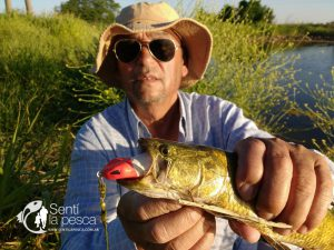 HOPLIAS LURES TESTEO MODELO KILLER Y MINI KILLER17