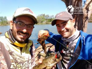 hoplias lures turbo shalow testeo